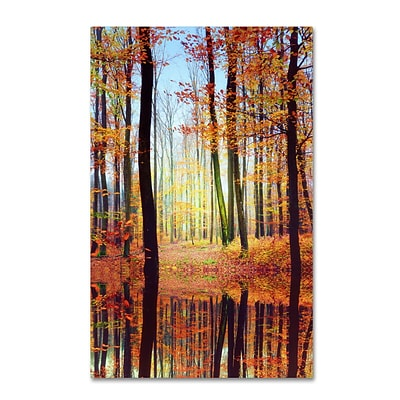 Trademark Philippe Sainte-Laudy Fall Mirror Gallery-Wrapped Canvas Art, 30 x 47