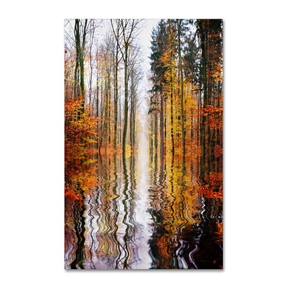 Trademark Philippe Sainte-Laudy Higher Ground Gallery-Wrapped Canvas Art, 16 x 24