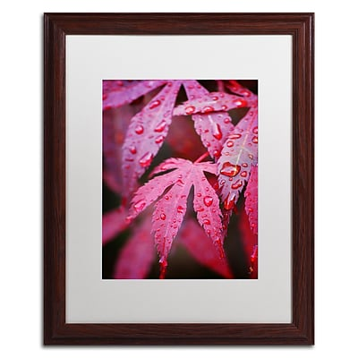 Trademark Philippe Sainte-Laudy Red Maple Leaves Art, White Matte With Wood Frame, 16 x 20