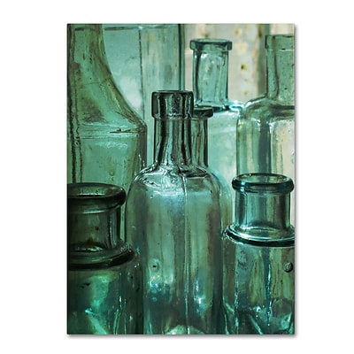 Trademark Patty Tuggle Antique Bottles Gallery-Wrapped Canvas Art, 24 x 32