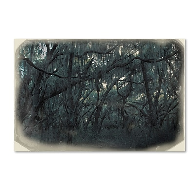 Trademark Patty Tuggle Forest Dreams Gallery-Wrapped Canvas Art, 12 x 19