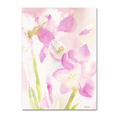 Trademark Sheila Golden Amaryllis Blossoming Gallery-Wrapped Canvas Art, 14 x 19