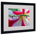 Trademark Steve Wall Drops with a Little Flair Art, White Matte W/Black Frame, 16 x 20