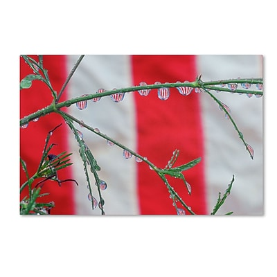 Trademark Steve Wall Patriotic Puddles Gallery-Wrapped Canvas Art, 30 x 47