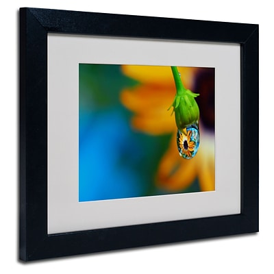 Trademark Steve Wall Puddle of Petals Art, White Matte W/Black Frame, 11 x 14