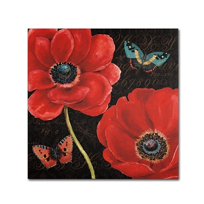 Trademark Daphne Brissonnet Petals and Wings II Gallery-Wrapped Canvas Art, 24 x 24