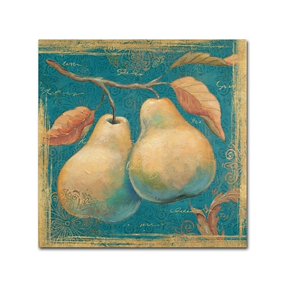 Trademark Daphne Brissonnet Lovely Fruits I Gallery-Wrapped Canvas Art, 14 x 14