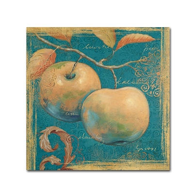 Trademark Daphne Brissonnet Lovely Fruits II Gallery-Wrapped Canvas Art, 14 x 14