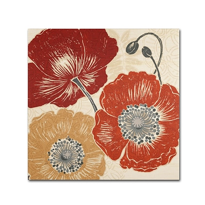 Trademark Daphne Brissonnet A Poppys Touch II Gallery-Wrapped Canvas Art, 24 x 24