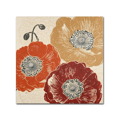 Trademark Daphne Brissonnet A Poppys Touch III Gallery-Wrapped Canvas Art, 18 x 18