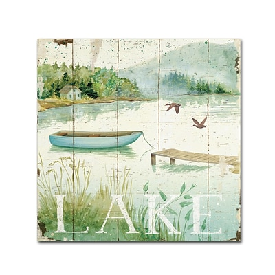 Trademark Daphne Brissonnet Lakeside II Gallery-Wrapped Canvas Art, 24 x 24