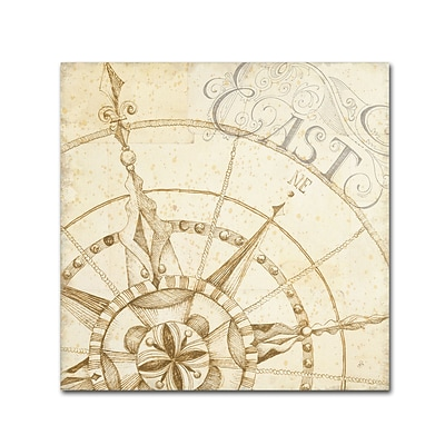 Trademark Daphne Brissonnet Coast to Coast Sepia III Gallery-Wrapped Canvas Art, 35 x 35