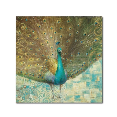Trademark Danhui Nai Teal Peacock on Gold Gallery-Wrapped Canvas Art, 14 x 14