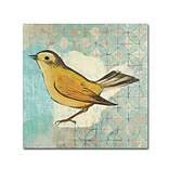 Trademark Kathrine Lovell Wilson Warbler II Gallery-Wrapped Canvas Art, 18 x 18
