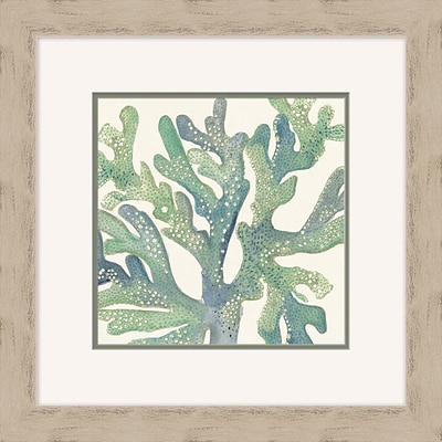 Coral Crop 2 Framed Art; 24 x 24