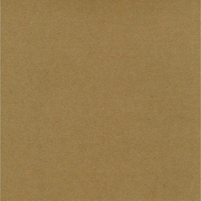 Worldwin® 12 x 12 Kraft Cardstock, Brown, 25/Pack