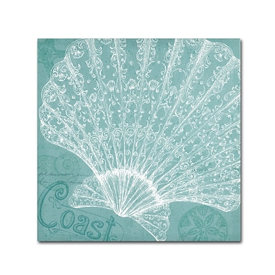Trademark Fine Art WAP0099-C2424GG Aqua Treasure III by Daphne Brissonnet 24 x 24 Frameless Art
