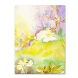 Trademark Fine Art SG5701-C2432GG Enchanted by Sheila Golden 32 x 24 Frameless Art