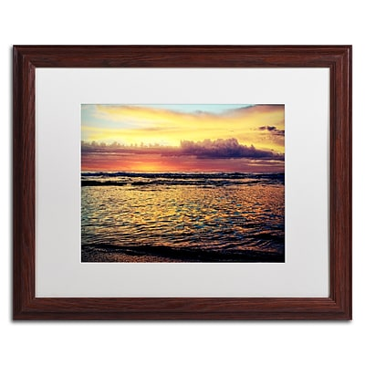 Trademark Fine Art BC0131-W1620MF Lonely at Sunset by Beata Czyzowska Young 16 x 20 Framed Art