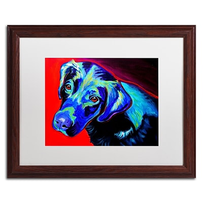 Trademark Fine Art ALI0558-W1620MF Canyon by DawgArt 16 x 20 Framed Art, White Matted