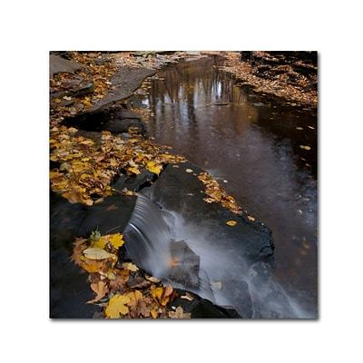 Trademark Fine Art KS0141-C2424GG Lakeview Autumn Waterfall #2 by Kurt Shaffer 24 x 24 FRMLS Art