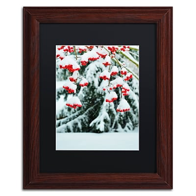 Trademark Fine Art KS0189-W1114BMF inter Berries and Pine by Kurt Shaffer 14x11 FRM Art, BLK MTD