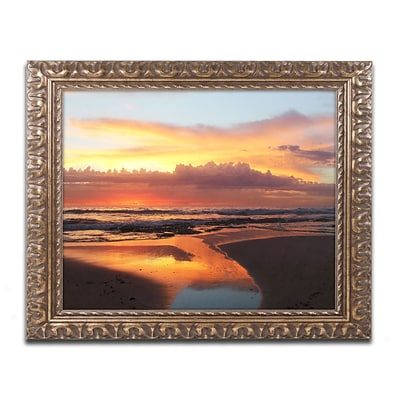 Trademark Fine Art BC0138-G1114F Once Upon a Morning by Beata Czyzowska Young 11 x 14 Framed Art