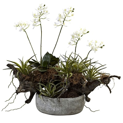 Nearly Natural 4839 Succulent Garden Floral Arrangement 20 x 22-inch White