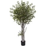 Nearly Natural 5439 Olive Tree 72 x 40 inch, Green