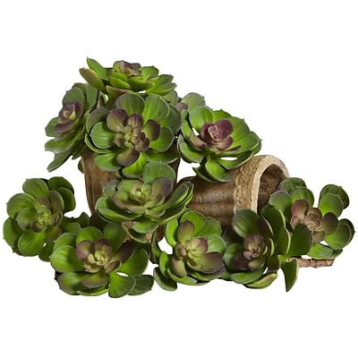 Nearly Natural 6106-GB-S12 Echeveria Succulent Plant 5 x 5 inch, Green & Burgundy