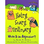 Hairy, Scary, Ordinary: What.. Book