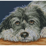 RTO M413 Multicolor 11.5 x 11.5 Dog Melancholy Counted Cross Stitch Kit