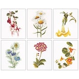 Thea Gouverneur TG3084 Multicolor 8x6.75 Floral Studies 4 On Aida Counted Cross Stitch Kit, 6/Set