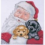 Tobin DW5978 Multicolor 13 x 13 Santa with Puppies Counted Cross Stitch Kit
