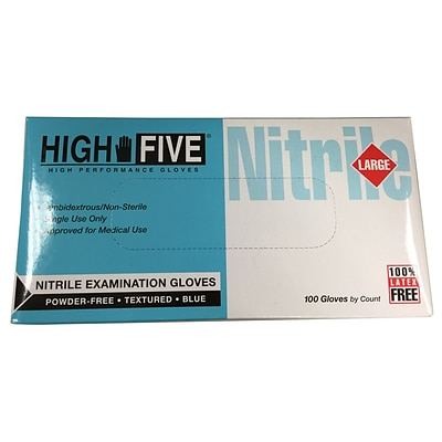 High Five Products Inc Nitrile Gloves, Large, 1000/Case