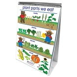 NewPath Learning All about Plants Curriculum Mastery Flip Chart Set
