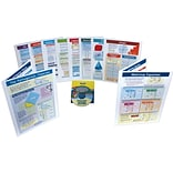 10 Piece Mastering Math Visual Learning Guides Set
