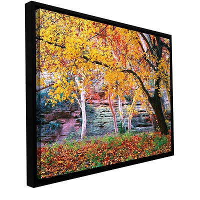 ArtWall Aravaipa Canyon Gallery-Wrapped Canvas 36 x 48 Floater-Framed (0uhl003a3648f)