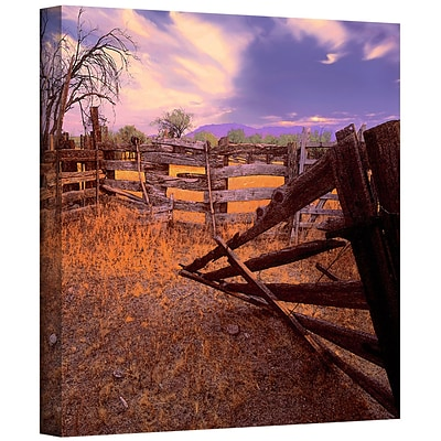 ArtWall Ghost Ranch Gallery-Wrapped Canvas 18 x 18 (0uhl010a1818w)