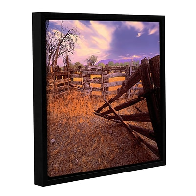 ArtWall Ghost Ranch Gallery-Wrapped Canvas 14 x 14 Floater-Framed (0uhl010a1414f)