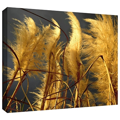 ArtWall Storm Swept Gallery-Wrapped Canvas 14 x 18 (0uhl015a1418w)