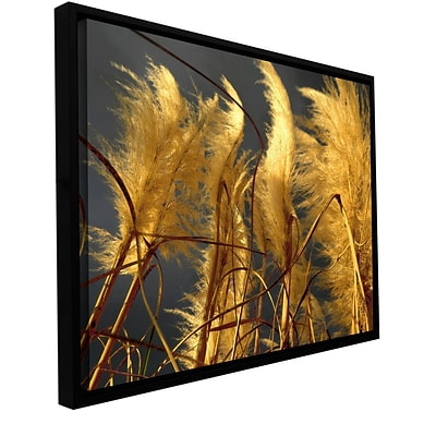 ArtWall storm Swept Gallery-Wrapped Canvas 24 x 32 Floater-Framed (0uhl015a2432f)