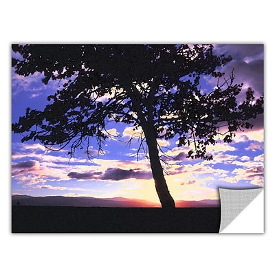 ArtWall Teton Meadow Sunrise Art Appeelz Removable Wall Art Graphic 24 x 32 (0uhl017a2432p)