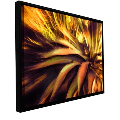 ArtWall Agave Puesta Gallery-Wrapped Canvas 14 x 18 Floater-Framed (0uhl021a1418f)