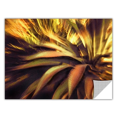 ArtWall Agave Puesta Art Appeelz Removable Wall Art Graphic 14 x 18 (0uhl021a1418p)