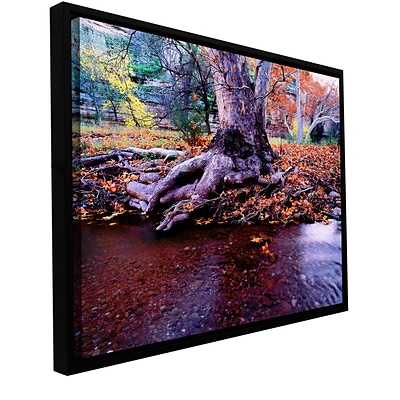 ArtWall Aravaipa Canyon Creek Gallery-Wrapped Canvas 18 x 24 Floater-Framed (0uhl022a1824f)