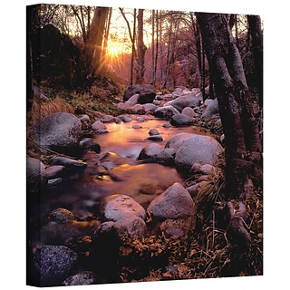 ArtWall Domeland Wilderness Gallery-Wrapped Canvas 24 x 24 (0uhl024a2424w)