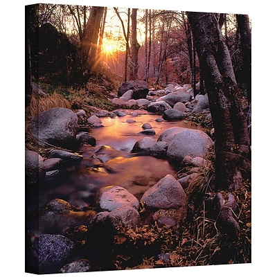 ArtWall Domeland Wilderness Gallery-Wrapped Canvas 36 x 36 (0uhl024a3636w)