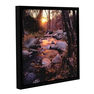 ArtWall Domeland Wilderness Gallery-Wrapped Canvas 36 x 36 Floater-Framed (0uhl024a3636f)