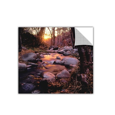 ArtWall Domeland Wilderness Art Appeelz Removable Wall Art Graphic 36 x 36 (0uhl024a3636p)